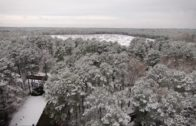 Mississippi Winter